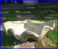 ITALIAN vtg terracotta pottery giant clam shell bowl french garden floor vase