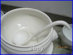 Vintage France Apilco Porcelaine Soup Tureen Lid Ladle 8 Bowls Lion's Head